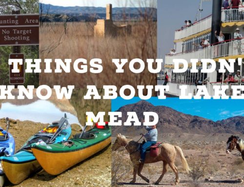 8 things you didn't know about Lake Mead